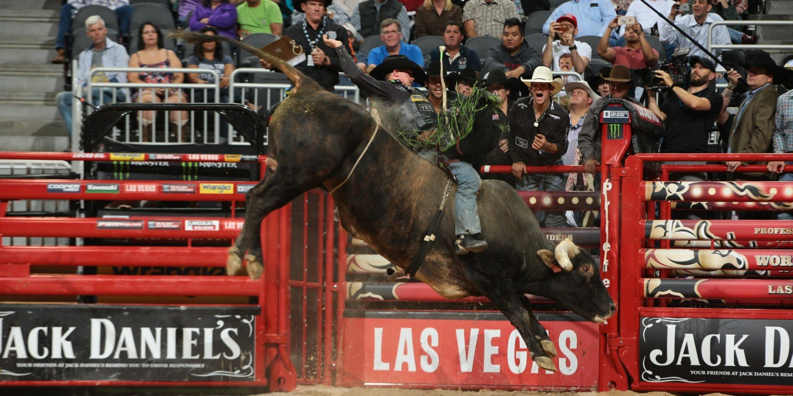 Chase Outlaw rides D&H Cattle Company's Air Marshall for 89.5 during the first round of the Built Ford Tough series PBR World Finals