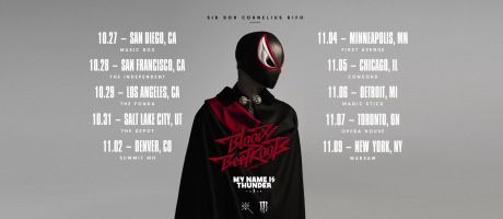 The Bloody Beetroots tour artwork