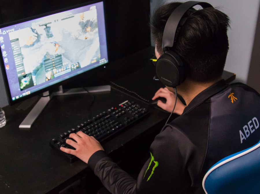 Pictures of Fnatic Dota 2 at Beyond The Summit's Dota Summit 8