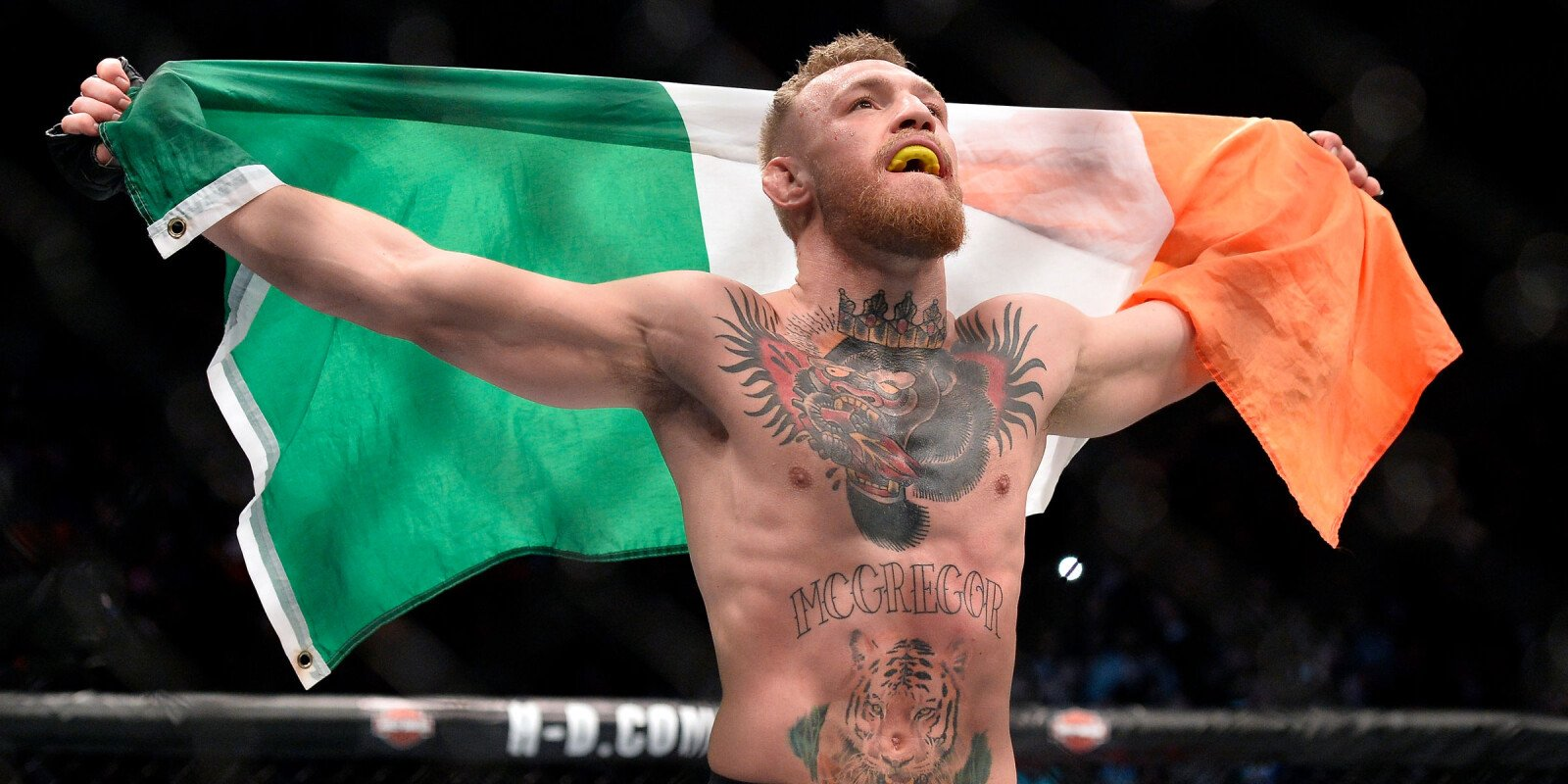 Conor McGregor of Ireland celebrates after his knockout victory over Eddie Alvarez in their UFC lightweight championship bout during the UFC 205 event at Madison Square Garden on November 12, 2016 in New York City.