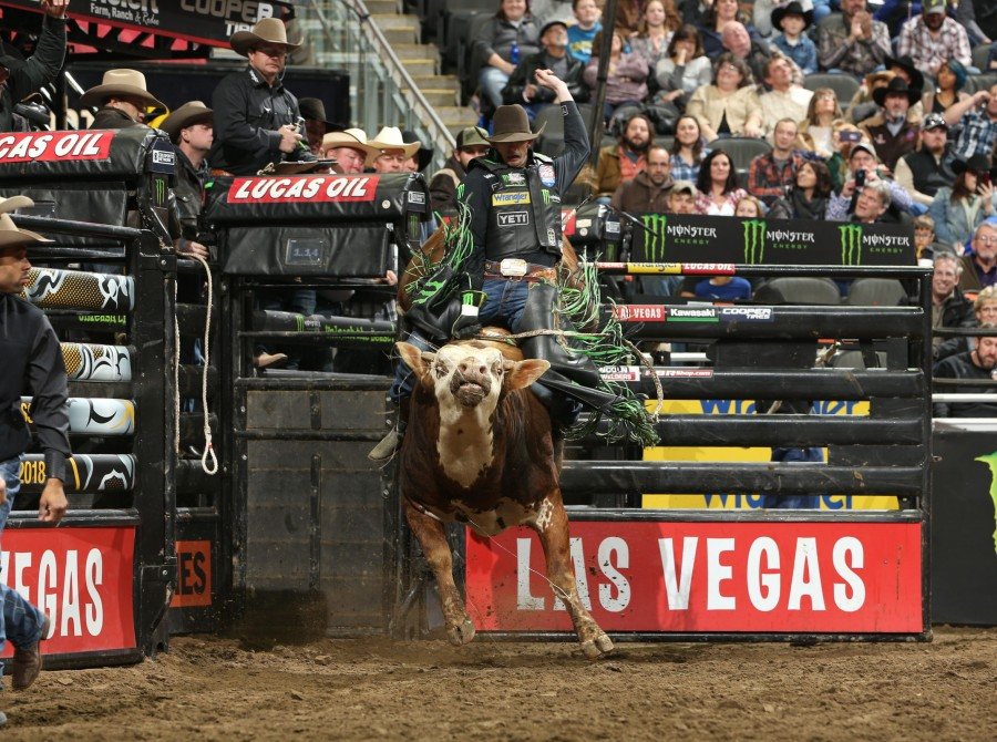 Image from the Kansas City PBR 25th Anniversary Unleash the Beast