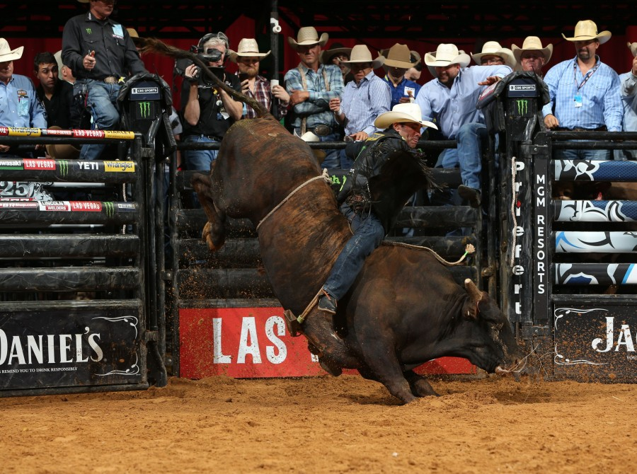 Monster professional bull riders competing at PBR Tulsa